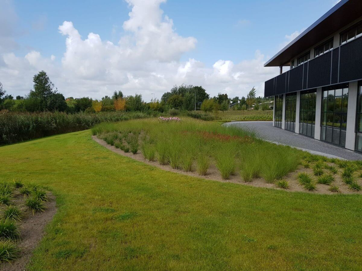 bedrijfstuin grassen aanleg hovenier Nederveentuinen