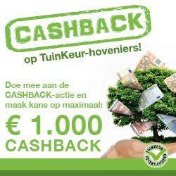 cashback hoveniers Nederveen Tuinen tuinaanleg Amsterdam