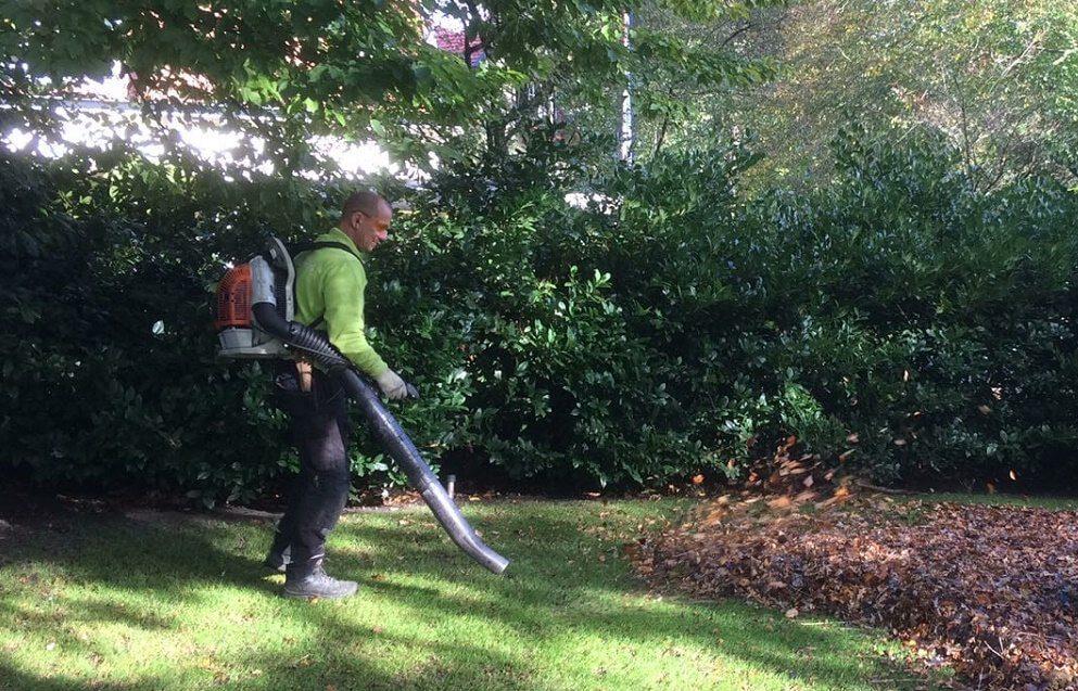 winterklaar onderhoud gras november hovenier amsterdam