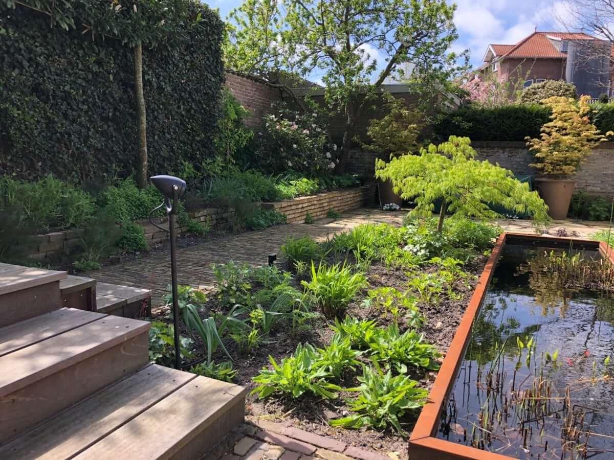 vijver beplanting tuinman Amsterdam