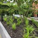 grote tuin aanleg hovenier Amsterdam