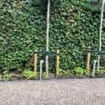 grindpad verlichting tuinman Haarlem