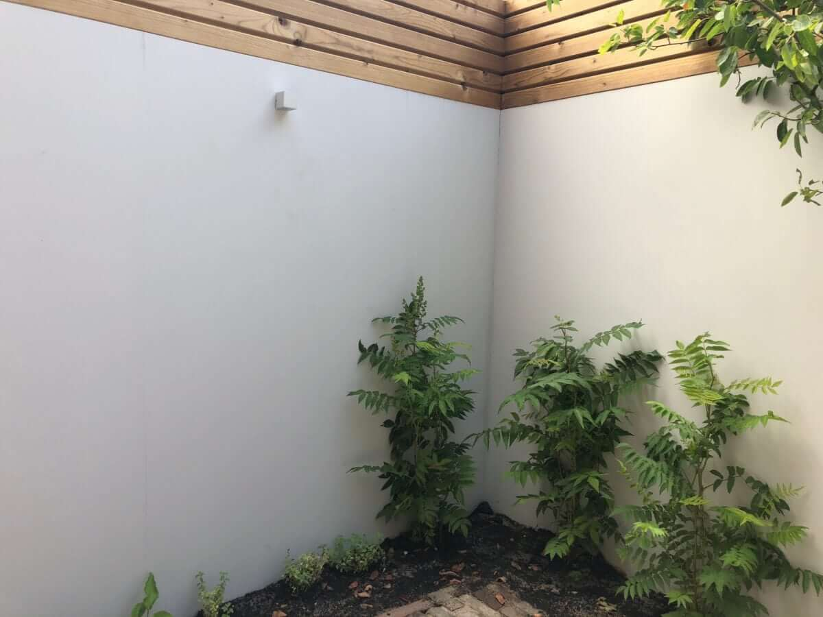 betonlook wand tuin Nederveentuinen