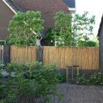 bomen aanleg Amstelveen hovenier