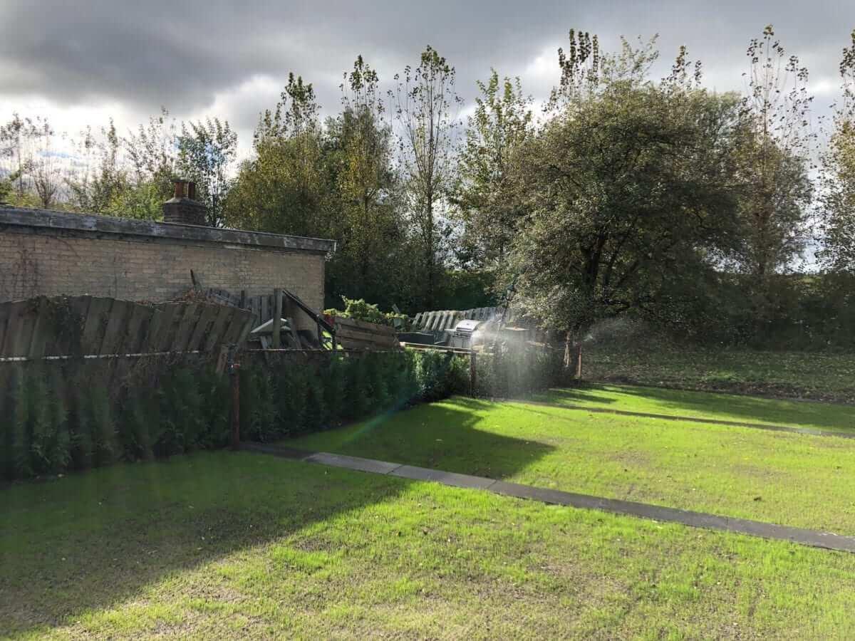 gras aanleg graszoden hovenier amsterdam