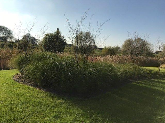 tuinonderhoud amsterdam bedrijf