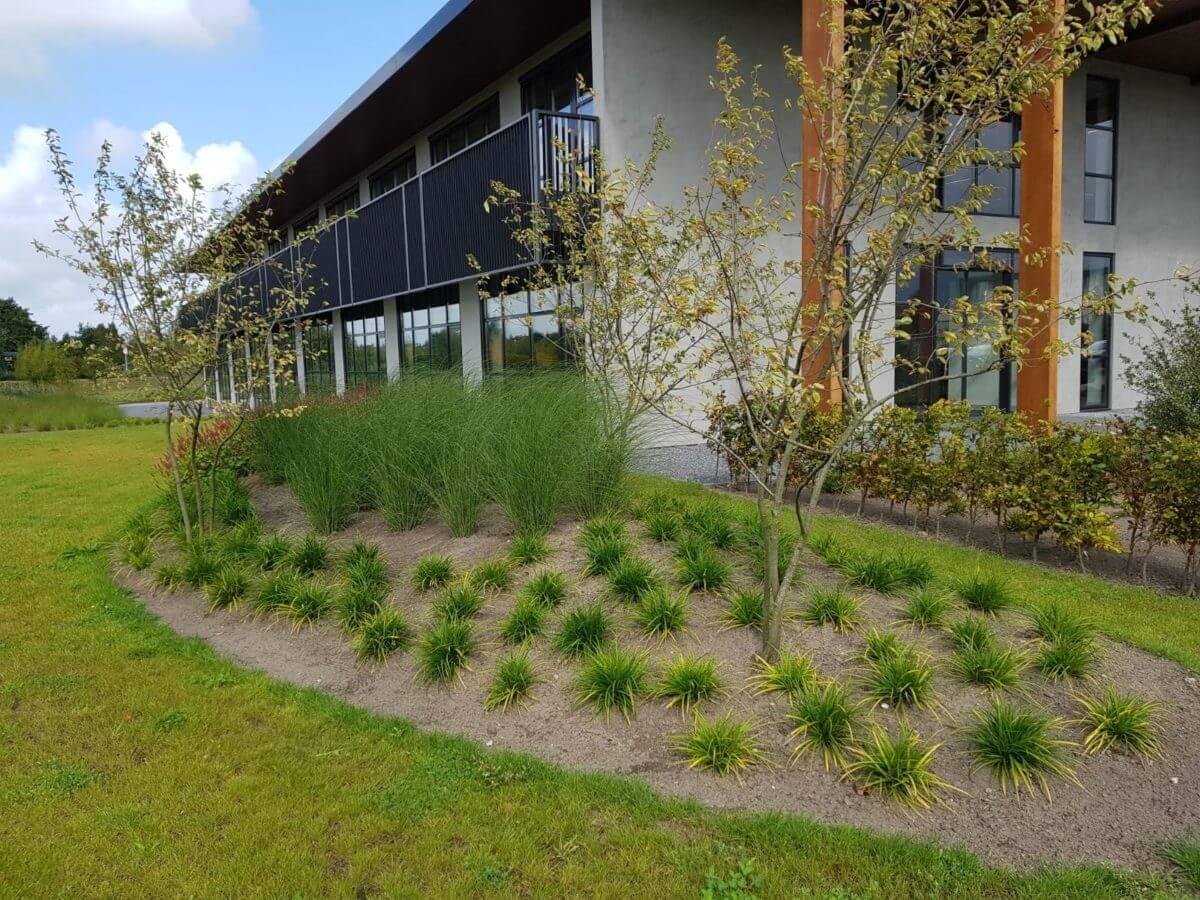 bedrijfstuin Amsterdam tuinaanleg