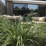 sfeervolle tuin aanleg amsterdam hovenier