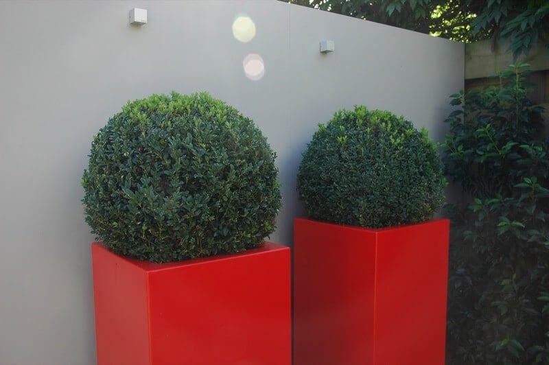 Plantenbakken tuinmuur met verlichting hoveniers regio Amsterdam