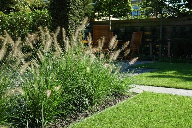 Tuinaanleg regio Amsterdam grassen hoveniersbedrijf